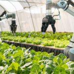 fermieri britanici roboţi